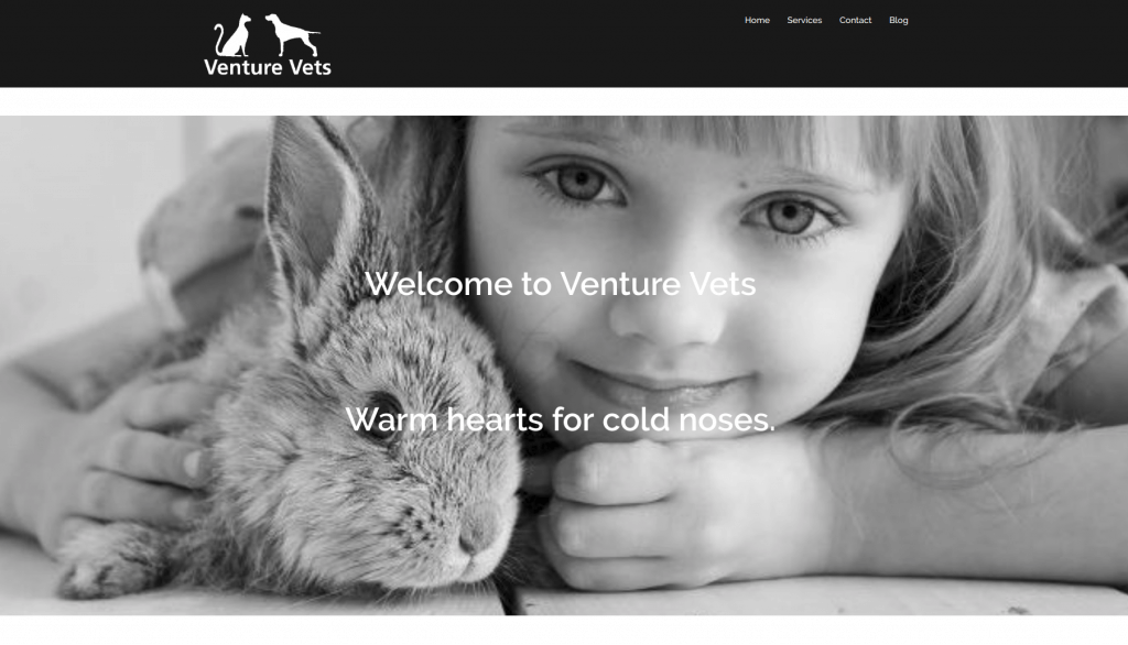 landing page of venture vets website by misfitt web design and development.